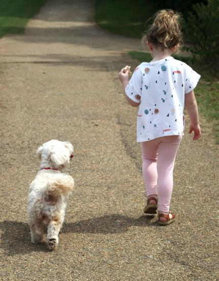 Young girl and her dog walking
