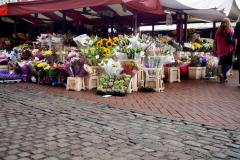 Flower stall at Northampton's Market